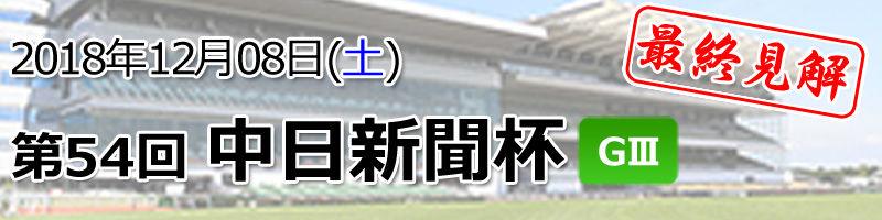 中日新聞杯見解800200
