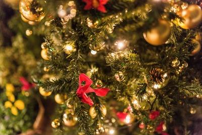 マジで…本当に…クリスマスなんだな…