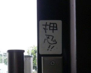 R0019317.JPG