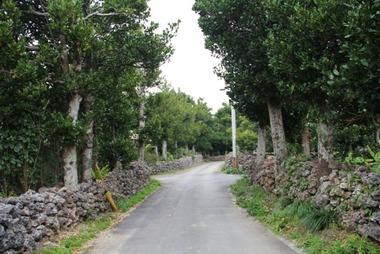 波照間島村中 2