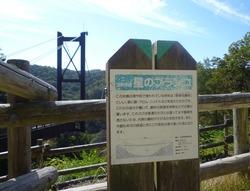 P1130514
