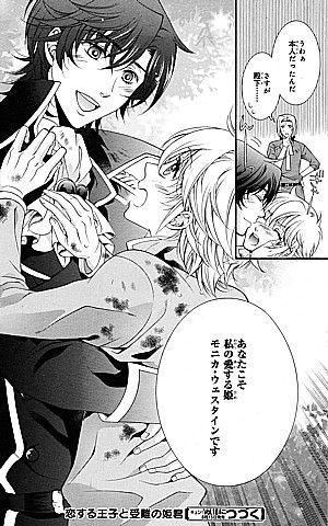 恋する王子と受難の姫君2