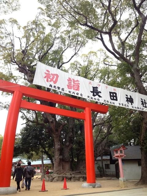 長田神社のクスノキ2