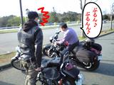 CA390261.JPG