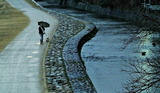 16---河川敷で犬の散歩
