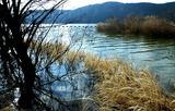 10---余呉湖ワカサギ釣り場付近