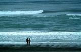 17----遠州灘の海岸