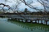 07---八条ヶ池