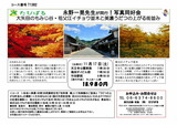 18.11.17----tabipal銀杏とモミジ大-