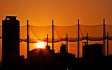14---フェンス越しの夕日