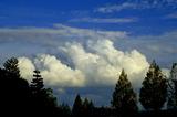 11.04----今日の空