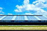 5.23----久御山大型ビニ-ルハウス