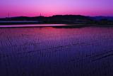 6.09----日没後の風景