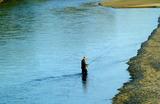 11.11----釣り人
