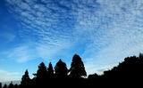 05----ウロコ雲2