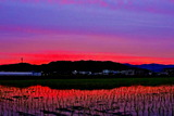 6.06----日没後の雲の夕焼け