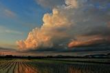 6.14----日没時京都市上空の積乱雲
