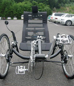 080727recumbenttric