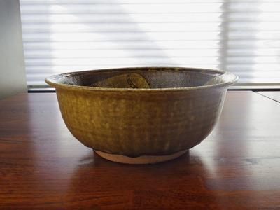 たけのこ文鉢 横