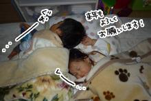 実写版:母ちゃんの枕を占領するブラザーズ