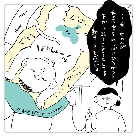 IMG_7040