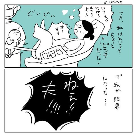 IMG_7254