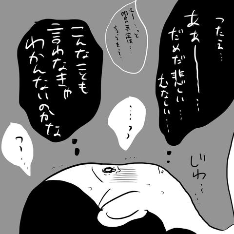 IMG_1336