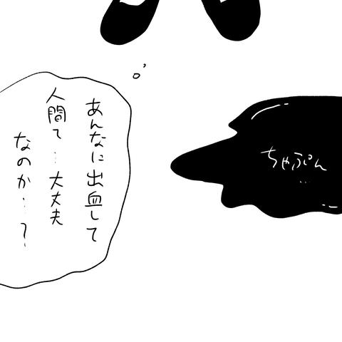 IMG_3346