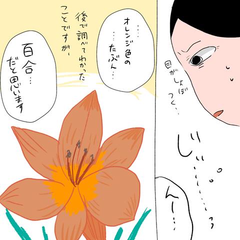 IMG_5101