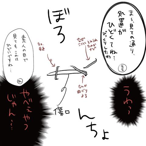 IMG_6235