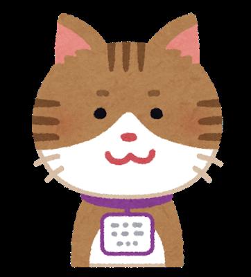pet_maigofuda_cat