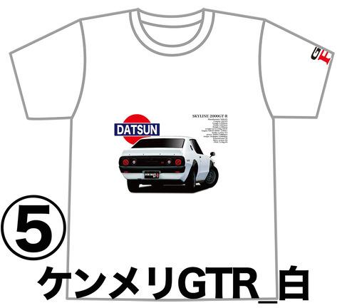 0W5_GTR_KPGC110