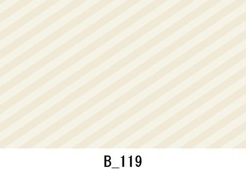 B_119