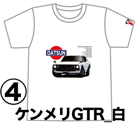 0W4_GTR_KPGC110