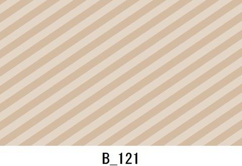 B_121