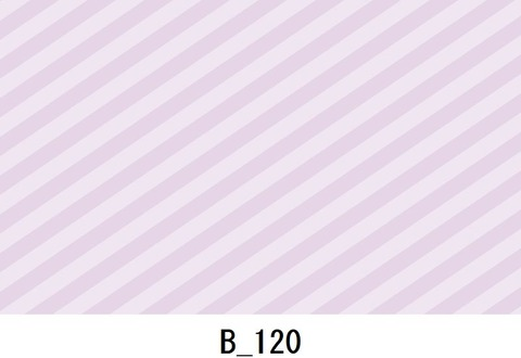 B_120