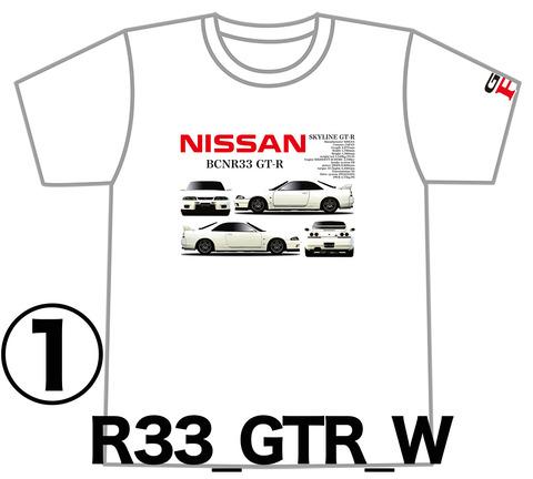 0W1_GTR_R33