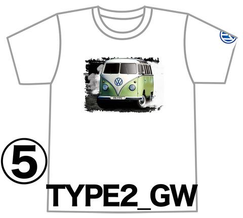 0TYPE2_GW_SPIN