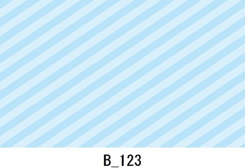 B_123