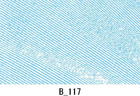 B_117