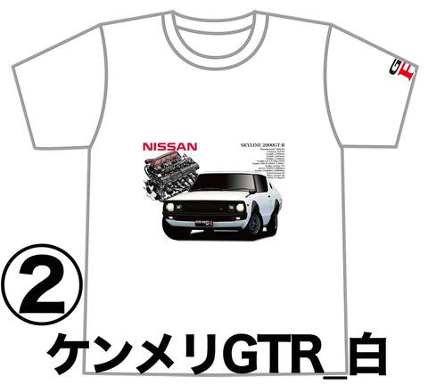0W2_GTR_KPGC110