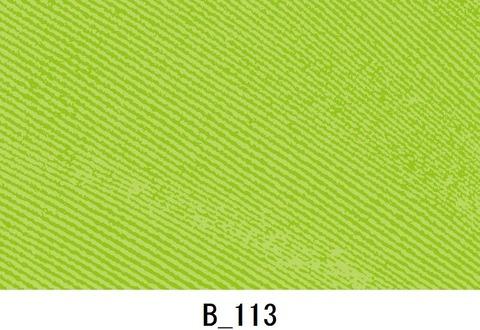 B_113