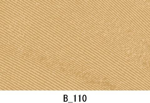 B_110