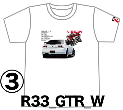 0W3_GTR_R33