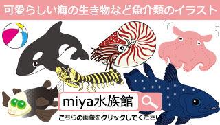 可愛らしい海の生き物など魚介類のイラスト
