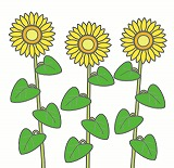 ひまわりのイラスト・絵カード素材|夏の花のイラスト