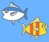 魚のイラスト・絵カード素材|海の生き物のイラスト