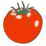 とまとのイラスト・絵カード素材 夏の野菜のイラスト