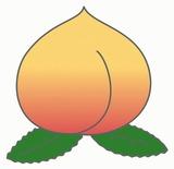 桃のイラスト・絵カード素材|夏の果物のイラスト