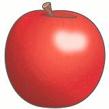 りんごのイラスト・絵カード素材|果物のイラスト